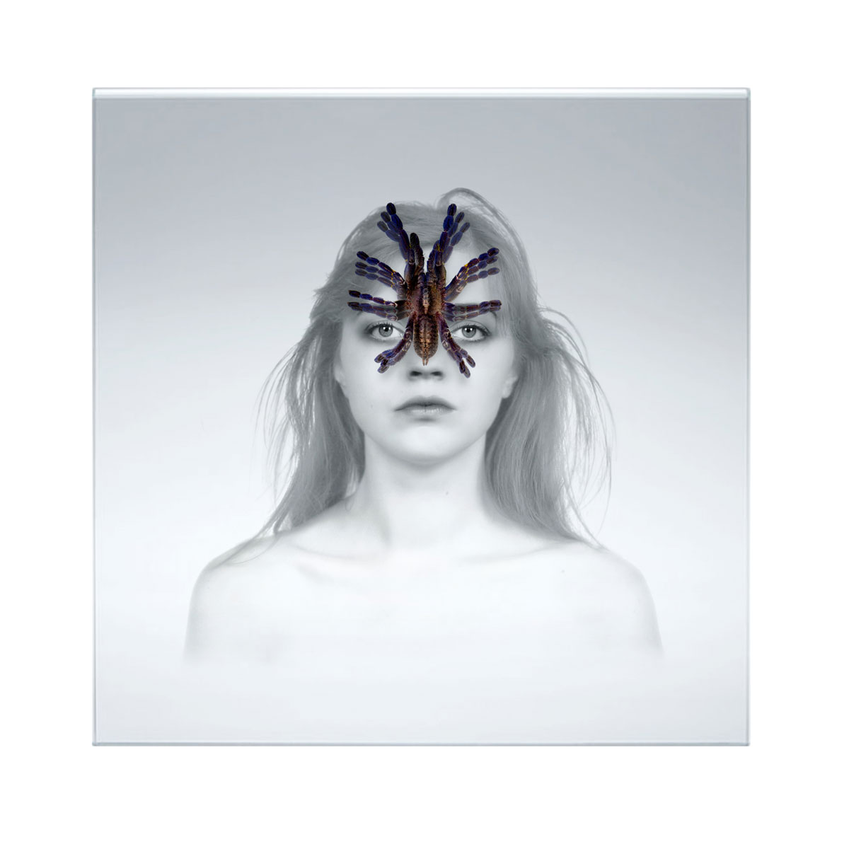 BUG (serie), 2018, stampa UV, plexiglass multilayer
