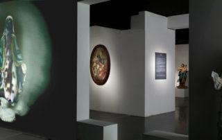 Mummy, 2007, installation view
